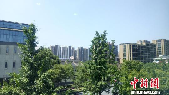 今天浙江出现5月罕见高温。 张煜欢 摄