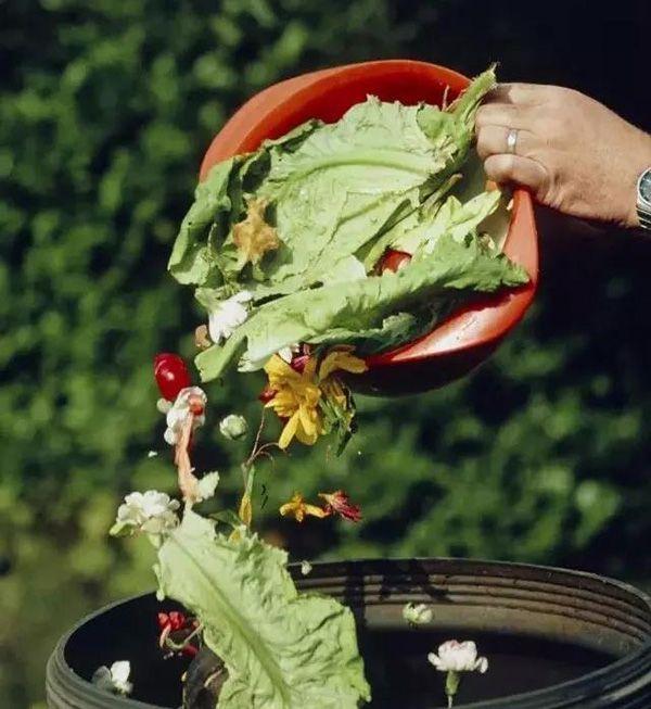 飞艇开奖记录:这些地方每天产生两三吨废弃食物,如何确保它们不再上餐桌?