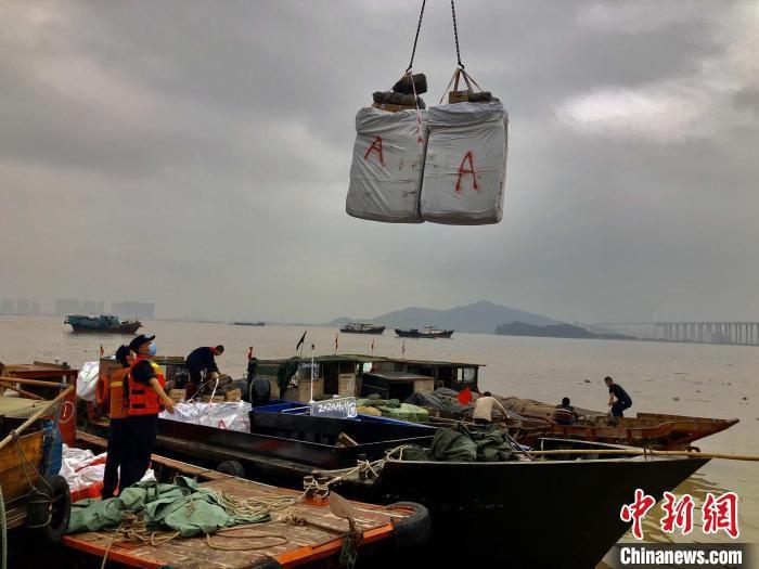 广州海关缉私警察组织吊装清点所查获的走私冻品 关悦 摄