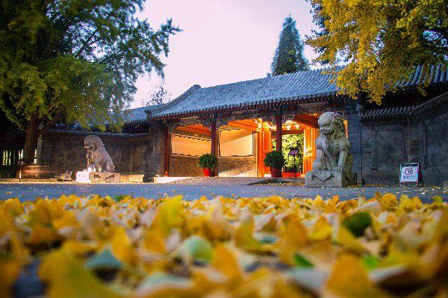 清华大学:工字厅外的秋天,静谧安好。  摄影/何康
