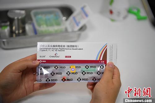 资料图为四价宫颈癌疫苗。 <a target='_blank' href='http://www.chinanews.com/'>中新社</a>记者 刘冉阳 摄