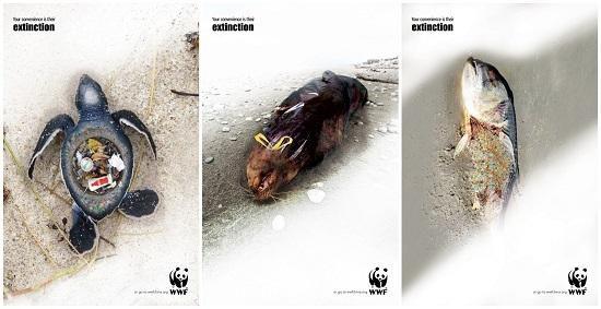 资料图:克里斯蒂安·沃特斯创作的海报。海报上,可以看见海龟的壳被挖空,体内塞满了垃圾,海狮被一个塑料垃圾袋闷死,以及海鱼吞下细小微粒后窒息死亡。