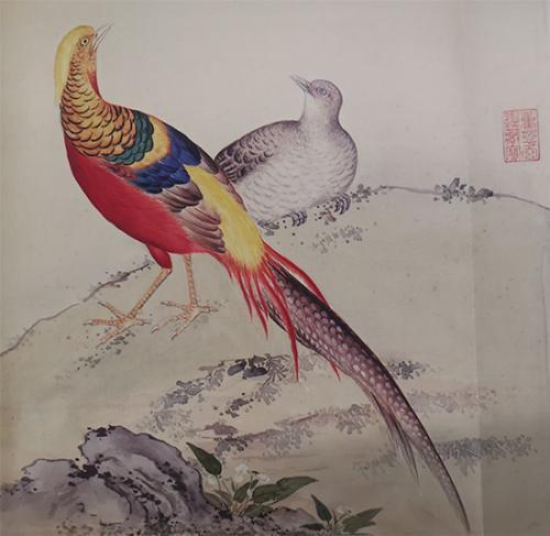 《给孩子的清宫鸟谱》中的锦鸡。