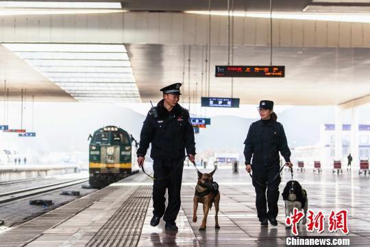 拉萨车站派出所民警惠旭东与见习民警易楠携犬在站台巡逻。 胡安鹏 摄