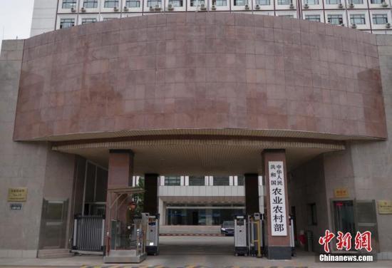 资料图:农业农村部。 <a target='_blank' href='http://www.chinanews.com/'>中新社</a>记者 贾天勇 摄