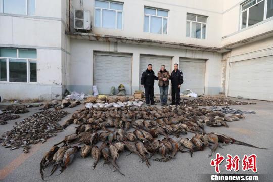 犯罪嫌疑人指认野生动物死体。警方供图