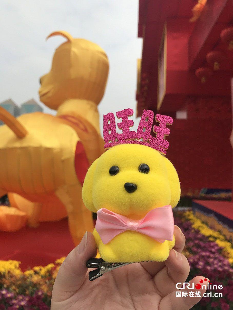 网上赌博平台注册送:瑞犬迎新春――广州天河花