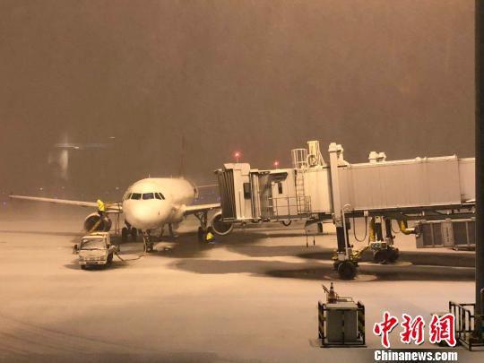 8日凌晨,记者搭乘从大庆返回南京的航班落地,此时南京上空鹅毛大雪纷纷扬扬,越下越大。夜空中,无论是停泊在机场内的飞机,还是十分平整的机场跑道、停机坪,很快便被一片白色所覆盖。 朱晓颖 摄