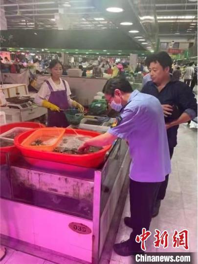 奉贤区市场监管局查处立云水产经营部违法经营不合格梭子蟹案。 上海市场监管局 摄