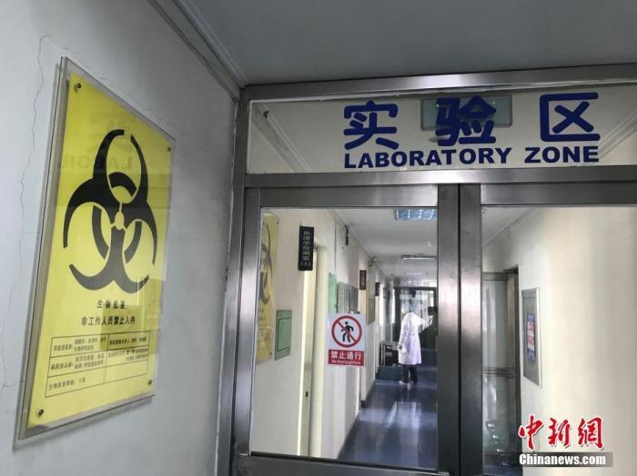 资料图:核酸检测实验室。 <a target='_blank' href='http://www.chinanews.com/'>中新社</a>记者 宫旭 摄