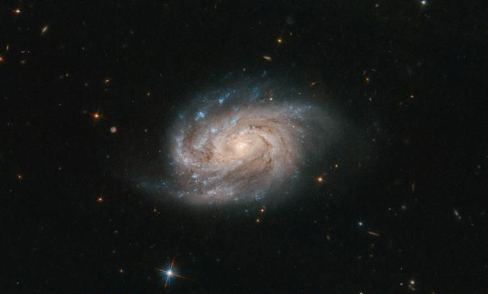 "NASA官网公布的""NGC 1803""星系照片"