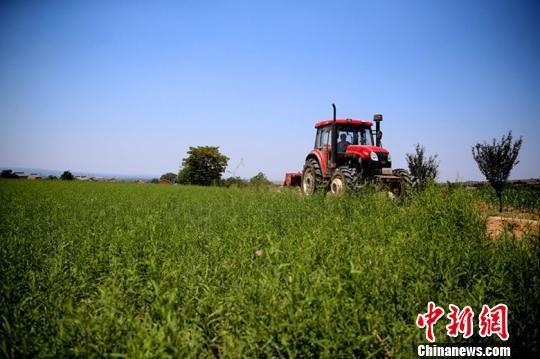 资料图:一贫困村通过成立农业机械合作社脱贫致富。 陈卫 摄