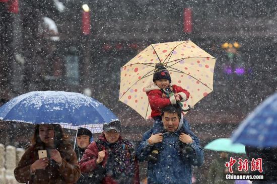 南京降雪资料图。泱波 摄